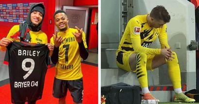 BVB-Fan: Sanchos Foto mit Bailey nach der Niederlage zeigt, wie viel beim BVB schiefläuft